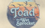 Image for Toad The Wet Sprocket